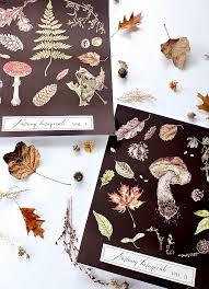 Botanical Chart Print Autumn Botanical Prints And Diy Wall Chart Hymns And Verses