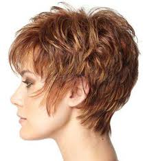 Haircut And Hairstyle 30 good short haircuts for over 50 short hairstyles & haircuts 2611 by stevesalt.us