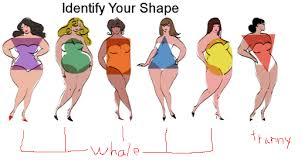 Female Body Types Chart Body Shape Chart For Women Bodybuilding Com Forums