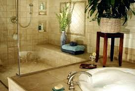 bathroom remodeling chicago il. Bathroom Renovation Remodeling Chicago Il
