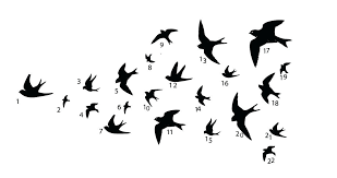 bird stencil for wall white birds wall decor swallows bird and stenciling ceramic bird wall stencil bird stencil for wall