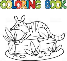 Small Picture Coloring Book Of Little Numbat stock vector art 536137633 iStock