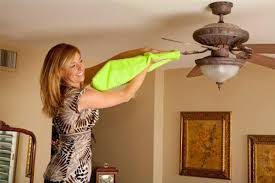vacuum the blades of the ceiling fan the first tip to clean