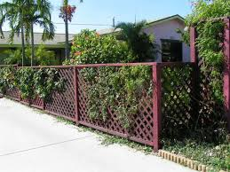 hereu0027s a lattice privacy fence painted pink e55