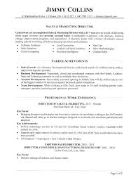 Sales Director Resume Interesting Sales Director Resume