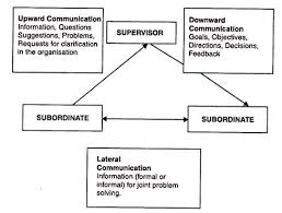 essay on communication meaning process and objectives directions of communication in organizations