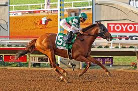 Breeders Cup Charts 2010 Breeders Cup Classic Three Key Prep Races Saturday
