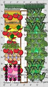 Small Picture Garden Plot Plans Finest Landscape And Garden Design Plan Example