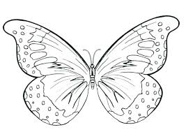 Free Coloring Pages Butterfly Free Coloring Pages For Adults And
