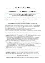 Executive Resume Services Professional Resume Writers Executive Best
