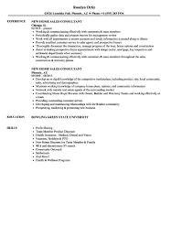 It Consultant Resume Best Of Consulting Resume Aurelianmg