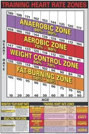 Aerobic Workout Heart Rate Chart