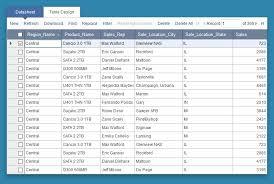 Pivot Table Reports Caspio Online Help