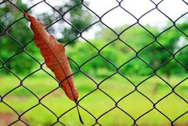 chain link fence post.  Chain Chainlink Fencing Can Last For Decades If Installed Correctly On Chain Link Fence Post E