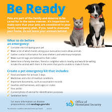 pet owners are you ready for emergencies inside san diego ohs animal preparedness 800x800 ppi