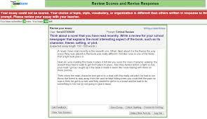 essayscorer summaryscorer your essay could not be scored
