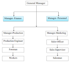 What Are The Types Of Organizational Structure Examples Of