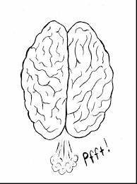 Small Picture extraordinary coloring pages of the brain with brain coloring page