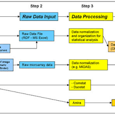 Meric Chart Flow Chart Of The Analytical Tool Box For Biofilm Analysis