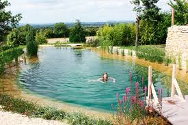 Natural Swimming Pools Let You Beat the Heat and Ditch the