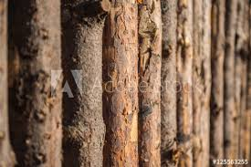 rustic wood fence background.  Wood Grey Wooden Fence  Background Textural Rustic Intended Rustic Wood Fence Background T