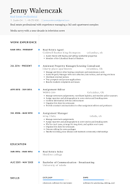 Real Estate Agent Resume Samples And Templates Visualcv