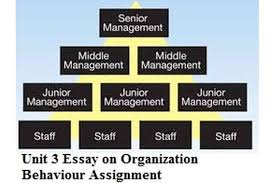 unit essay on organization behaviour assignment hnd help