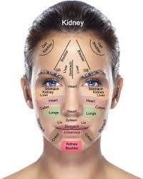 Acupressure Face Chart Reflexology Chart Of The Face For Acupressure Acupuncture