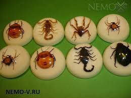 Талисман УДАЧИ привлечь удачу и деньги Галерея покупателей   реферат насекомые Коллекция