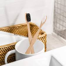 <b>Biodegradable Bamboo Toothbrush Set</b> - Single Use Plastic ...