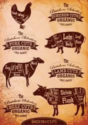 beef cuts diagram poster. Interesting Diagram Diagram Of Cut Carcasses Chicken Pig Cow Lamb By 111chemodan111 For Beef Cuts Poster R