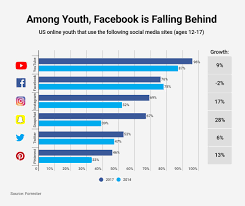 Social Media Usage Chart