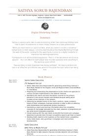 Senior Sales Executive Resume Samples - Visualcv Resume Samples Database