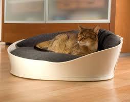 stylish cat furniture. Modern Cat Furniture Canada Stylish O