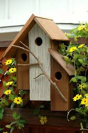 bird house plans by species beautiful 22 gorgeous and unique birdhouse designs