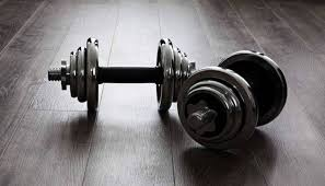 Weights Measures Chart 5 Best Dumbbells 2019 Top Rated Weights For Gym And Home