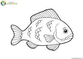 Kleur Kleurplaten Van Vis Vissen Kleurplaat Leukste Vissen Voor