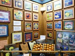 citrus museum takes you back to the 1800 s when early settlers began cultivating citrus and selling it mercially the land along the indian river