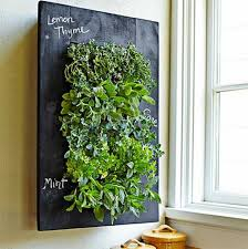 5 precautions you must take before attending indoor vertical garden wall indoor vertical garden wall