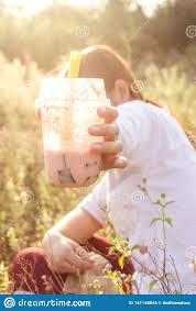Boba Light Drink Boba Tea In The Grassland Sunset Light Stock Photo