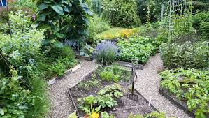 Small Picture How To Plan A Pretty And Productive Vegetable Garden Garden