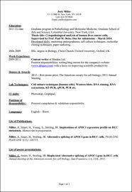 sample resume computer science undergraduate resume ixiplay   sample computer also › song of roland essay topics essays on grendel brave new world