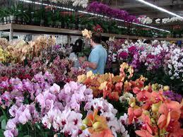 los angeles flower mart