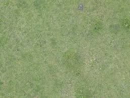 grass field aerial. Aerial Field Grass Ground Terrain Short S