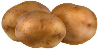 potatoes clipart. Fine Potatoes View Full Size  Inside Potatoes Clipart O