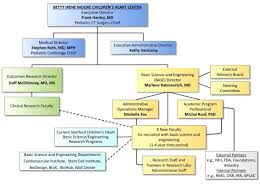 Stanford Hospital Organizational Chart Strategic Vision Basic Science And Engineering Intiative
