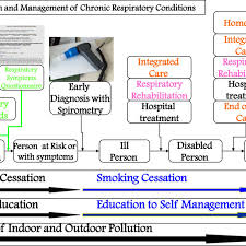 Copd Guidelines Chart General Flow Chart For Copd Management From 35 Mod