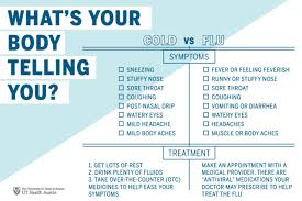 Difference Between Cold And Flu Chart Difference Between Flow Charts