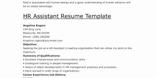Job History Resume Open Office Invoice Templates Sales Executive