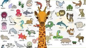 Top 10 chủ đề Tiếng Anh cho trẻ em 5 tuổi - I CAN READ